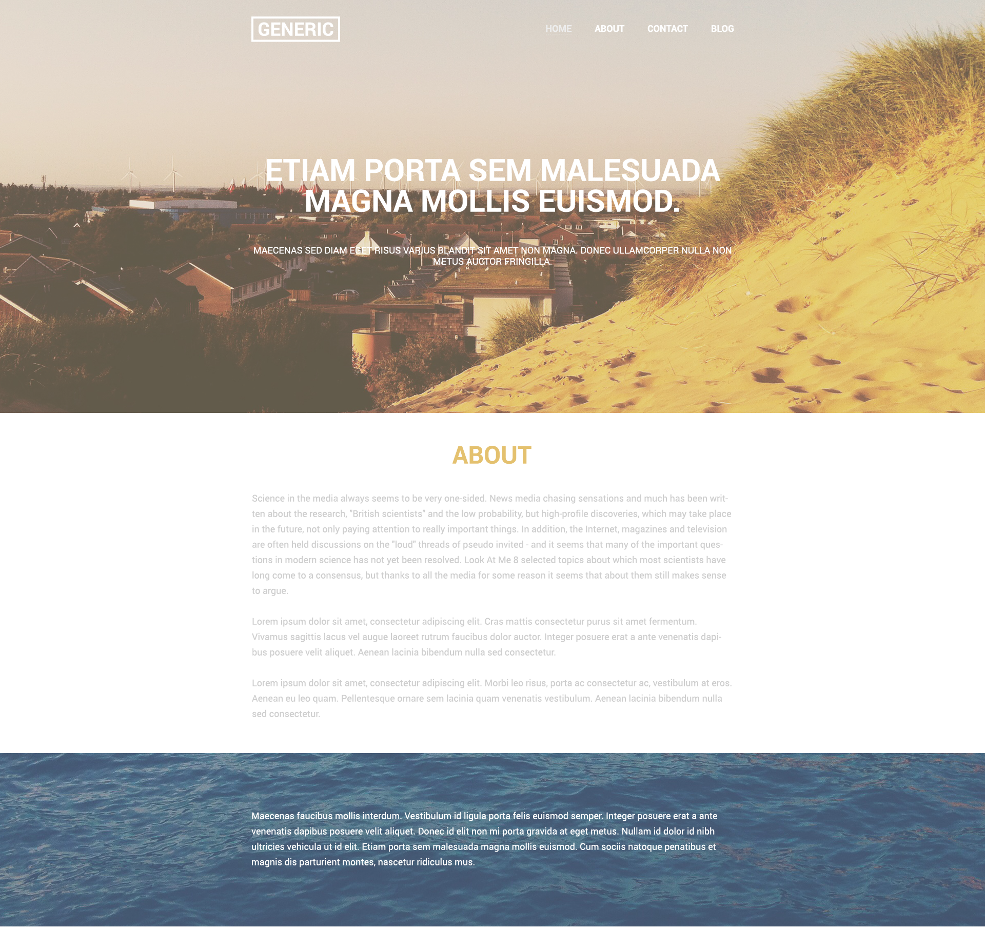 Generic website template preview